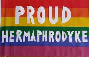 Proud Hermaphrodyke