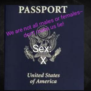 X Passport Meme